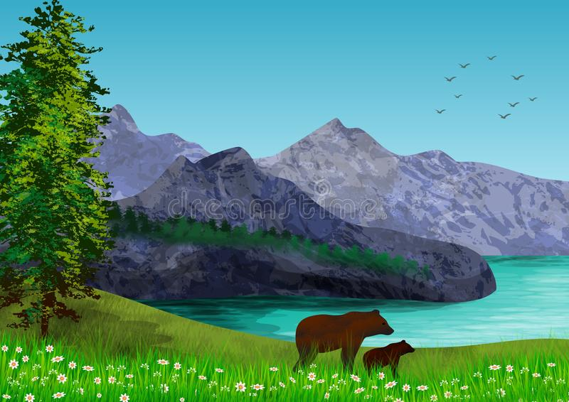 Background with natural landscape with mountains, sea and trees and in the foreground two bears. Illustration. royalty free stock images