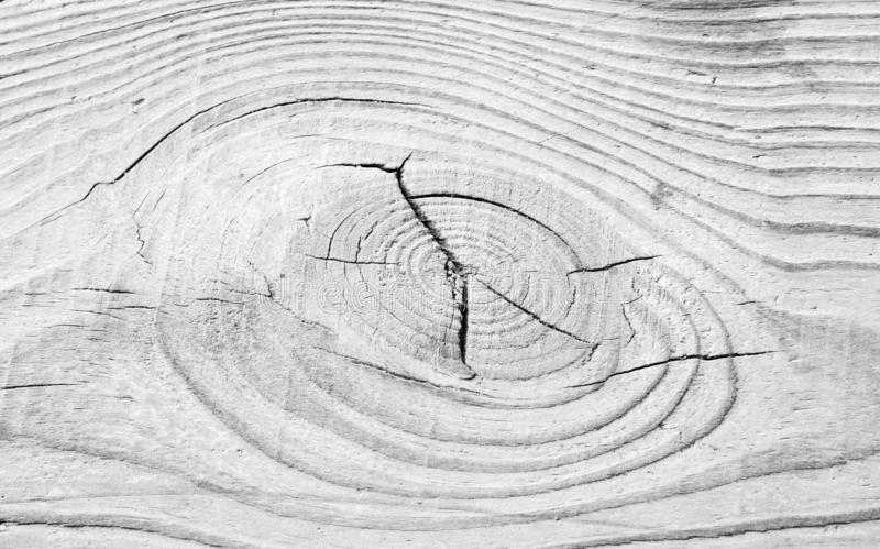 Background of natural wooden texture. Close-up wood board with naturally relief. Old cracked timber. stock images