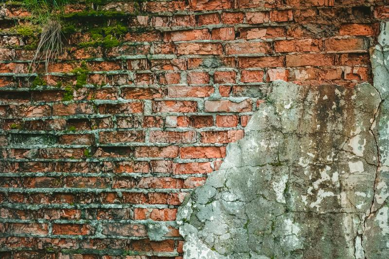 Background old brick wall overgrown with moss stock photo