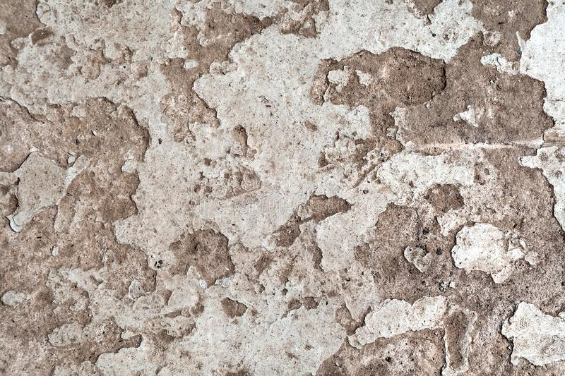 Background from old dirty floor with peeling paint.  stock photography