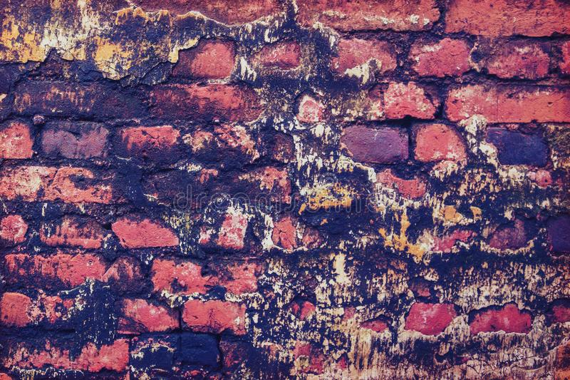 Background old red brick with mold stock photos