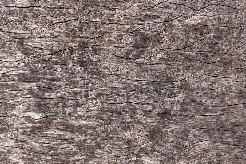 Background of old weathered grunge rusty wood panel for design. Seamless textures of old wood stock photography