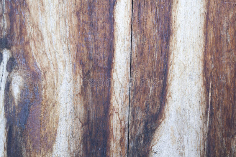 Background old wood. Splat brown textured stock photos