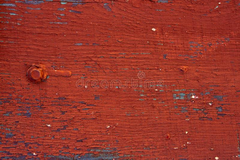 Background - old wooden surface painted boards. Close-up. The old red paint all cracked from time to time royalty free stock photography