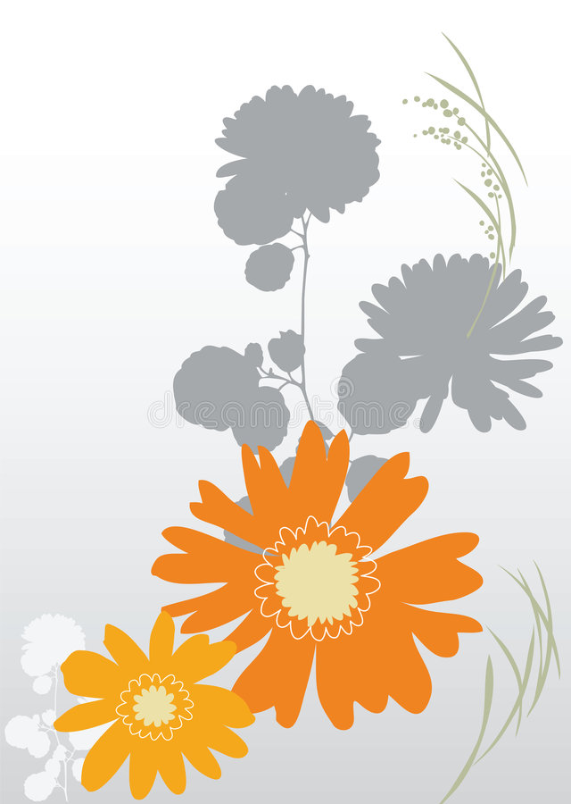 Background orange flowers vector illustration