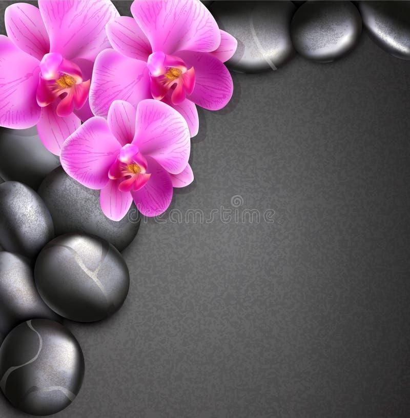 background orchids spa διάνυσμα πετρών απεικόνιση αποθεμάτων