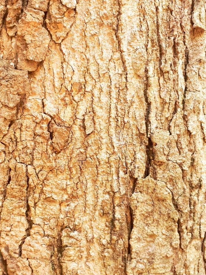 Background. Paintedwood, splat, slat, woodwall stock images
