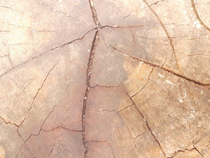 Background. Paintedwood, splat, slat, woodwall stock image
