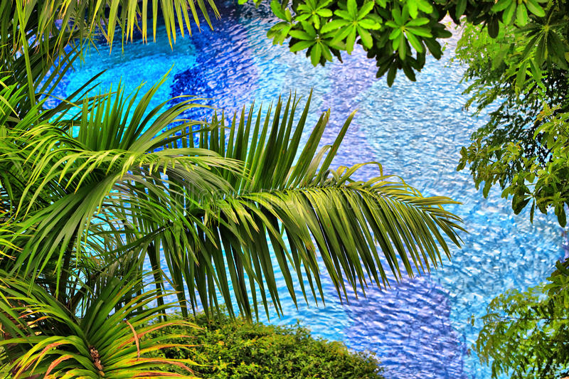 Background from palm branches stock image