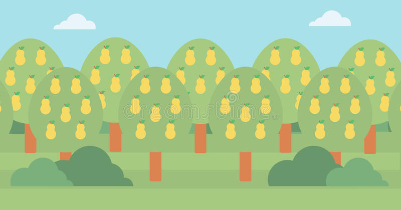 Background of pear trees. stock illustration