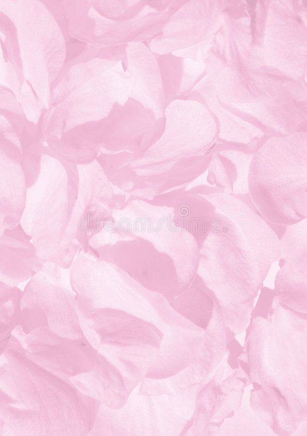 Background Of Petals Stock Images