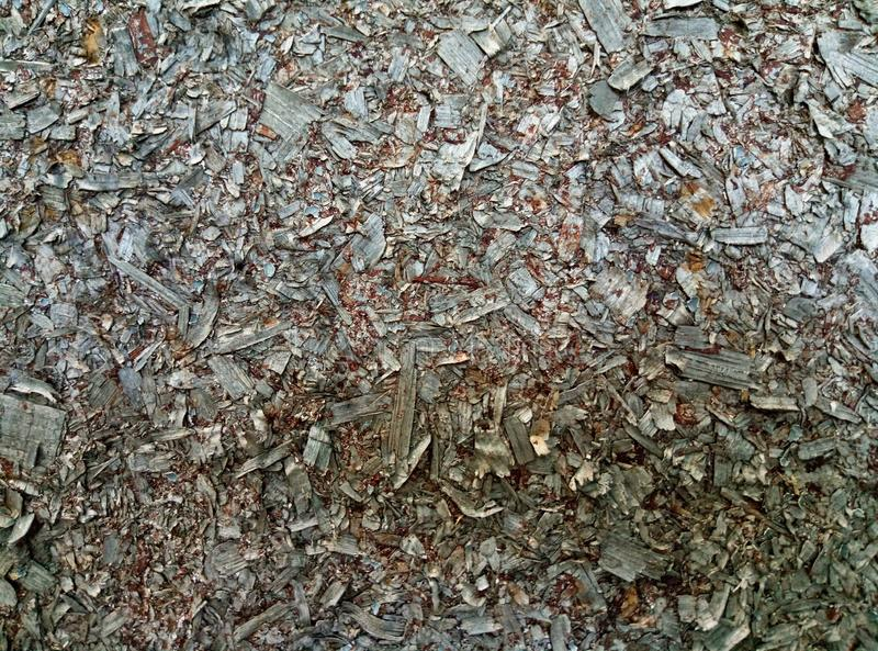 Background of pieces of preson woodchips texture royalty free stock image