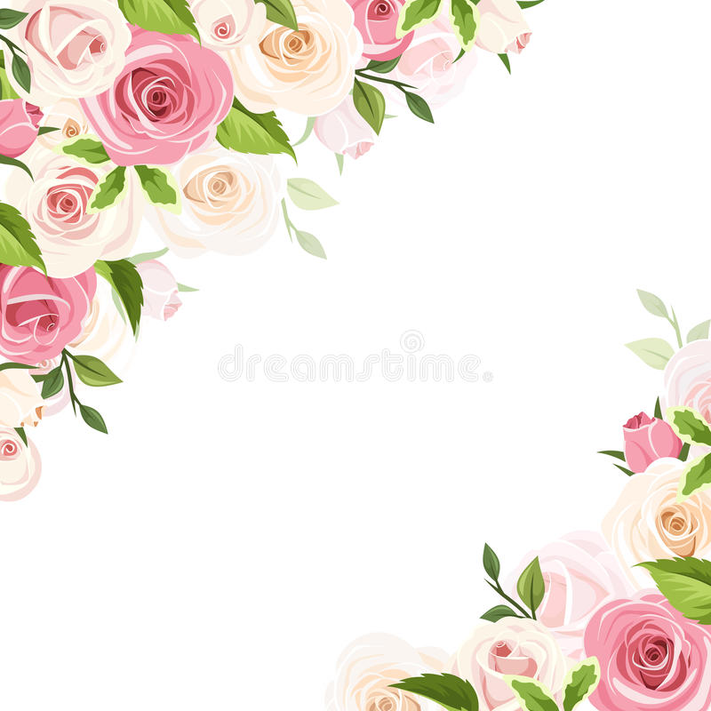Background With Pink And White Roses. Vector Illustration. Stock Vector - Illustration of ornate ...