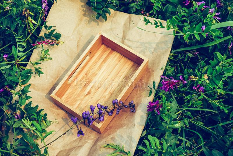 Background plants, frame kraft paper and box of wood. Concept natural cosmetics. Creative green floral background of natural leaves and meadow grass. Kraft paper stock image