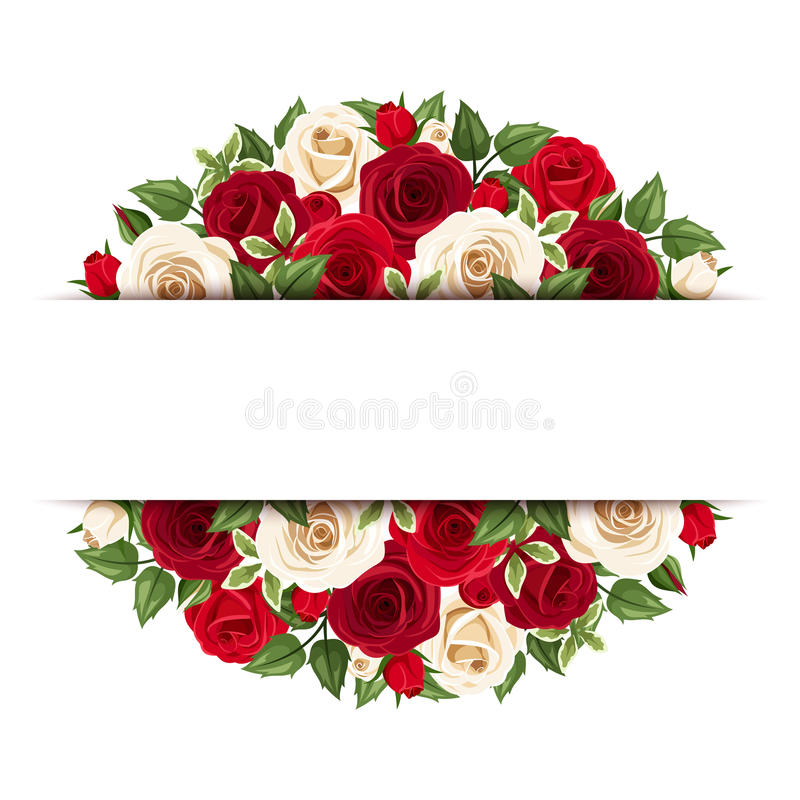 Background With Red And White Roses. Vector Eps-10. Stock