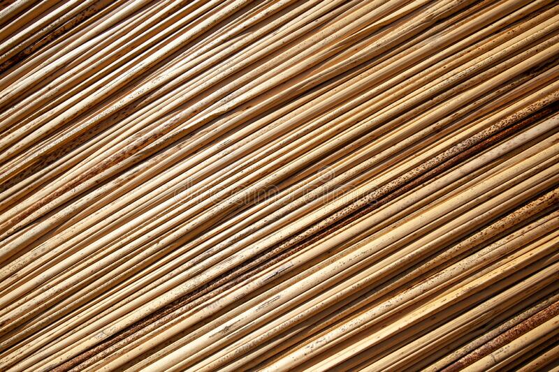 Background with reeds, diagonal, horizontal orientation, close-up, copy paste. stock image