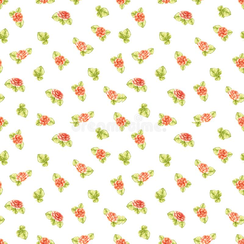 Background of repeating peach orange roses with olive-colored leaves beautiful light-colored pattern isolated on white background vector illustration