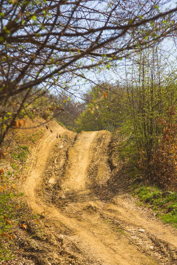 Background with rugged offroad road. Background with rugged offroad climbing road and green forest in a sunny day royalty free stock images