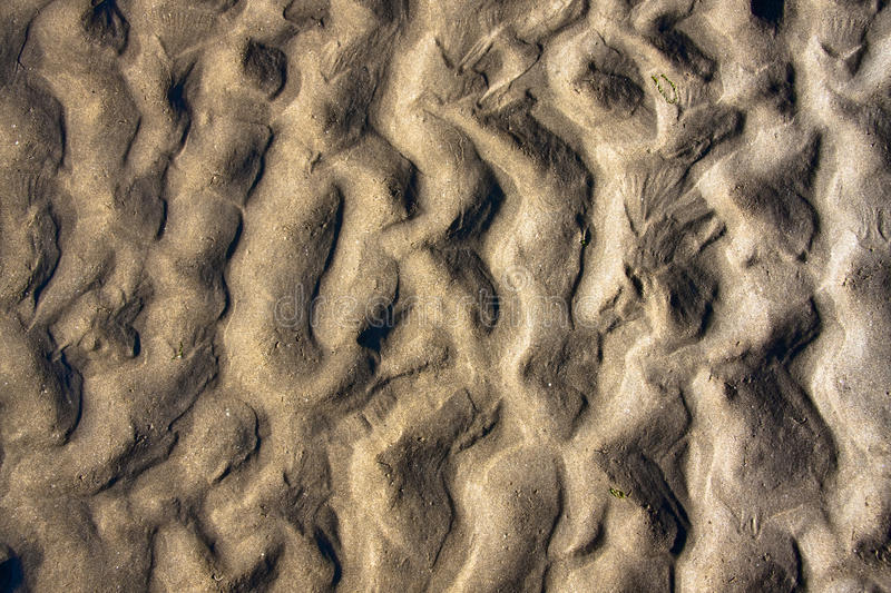 Download Background sand stock photo. Image of beach, ripple, nature - 11407904