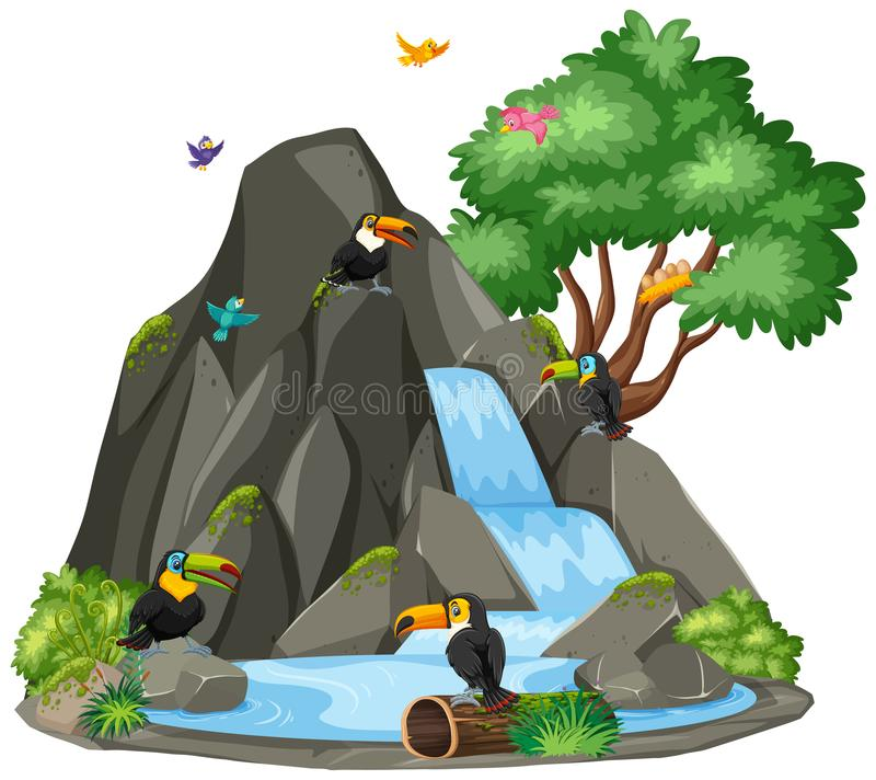 Background scene of toucan birds by the waterfall stock illustration