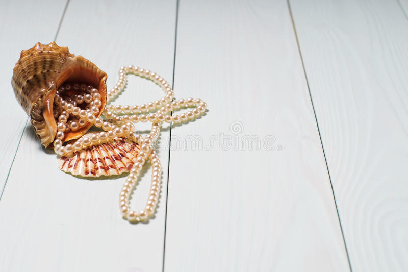 Background with sea cockleshells and pearls. Decor of seashells close-up on blue wooden table. Sea objects - shells, pearls. Background with sea cockleshells and royalty free stock photos