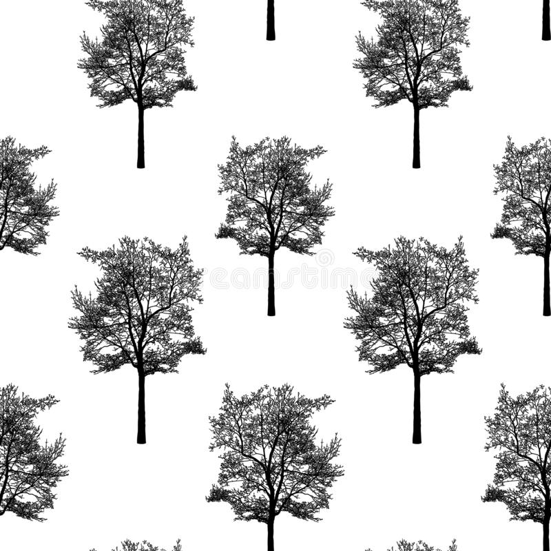Background of silhouettes of deciduous trees in winter stock illustration