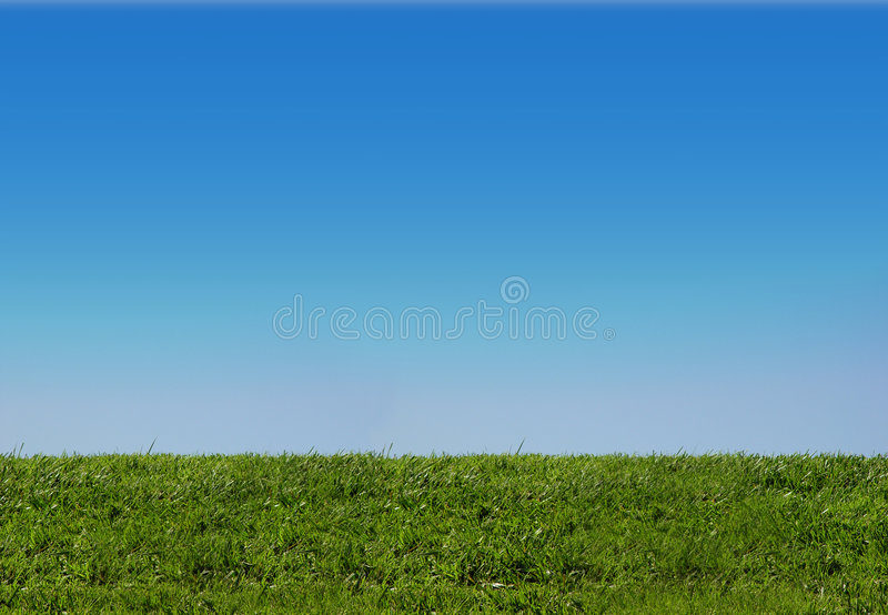 Background of sky and grass stock images
