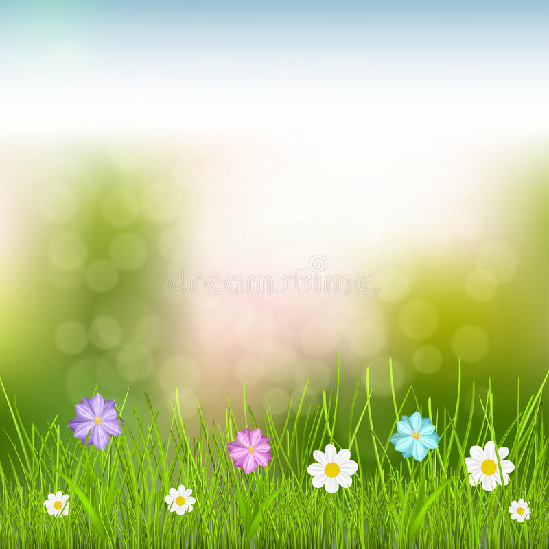 Download Background With Sky, Grass And Flowers Stock Photography - Image: 37655022
