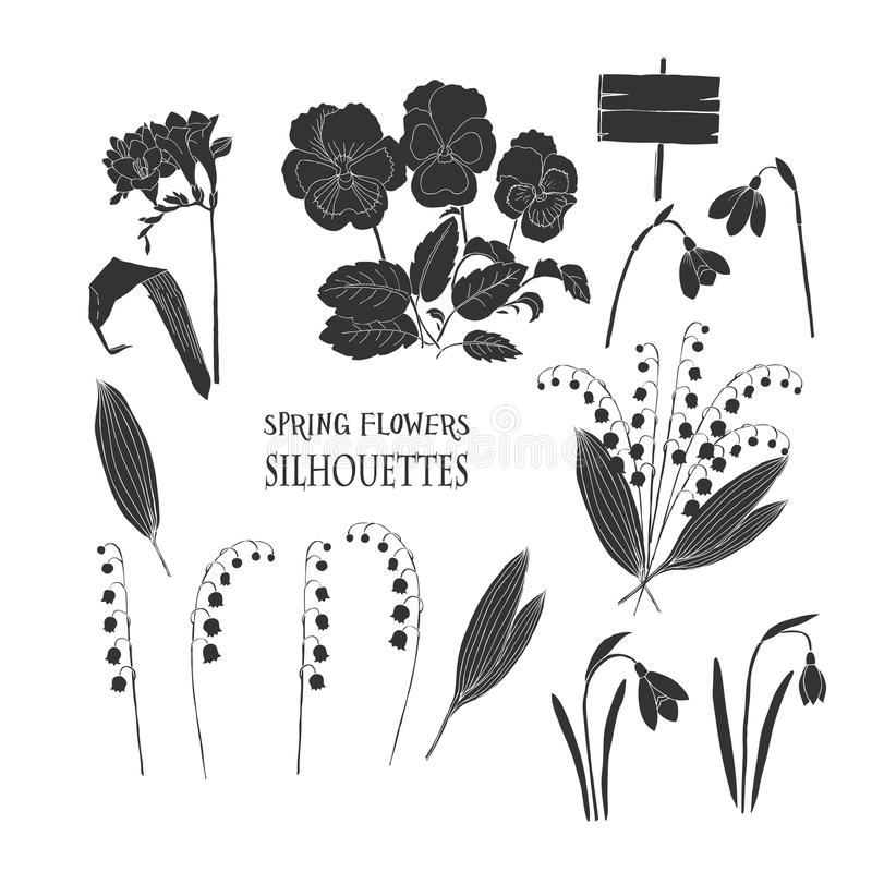 Background with Snowdrops vector illustration