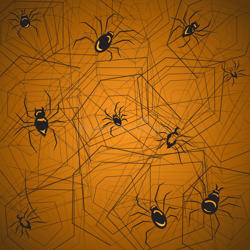 Background spider and cobweb stock photography