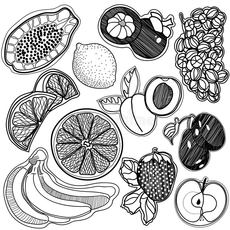 background square black and white fruit stock image