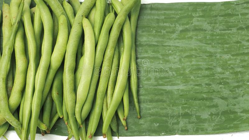 Background of string bean raw vegetable has copy space. Background of string bean raw vegetable green color of pure and real nature, Photo full frame has copy royalty free stock photo