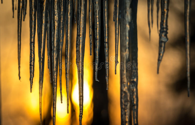 Background, sun dawning on icicles hanging low from roof edge. Abstract of natural icicle formation, lighted by sunrise. Abstract background of natural icicle stock photo
