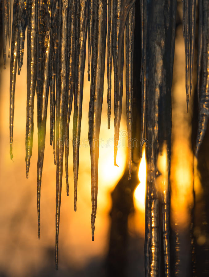 Background, sun dawning on icicles hanging low from roof edge. Abstract of natural icicle formation, lighted by sunrise. Abstract background of natural icicle stock photography