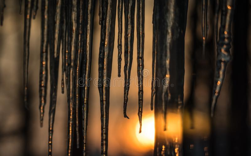 Background, sun dawning on icicles hanging low from roof edge. Abstract of natural icicle formation, lighted by sunrise. Abstract background of natural icicle stock images