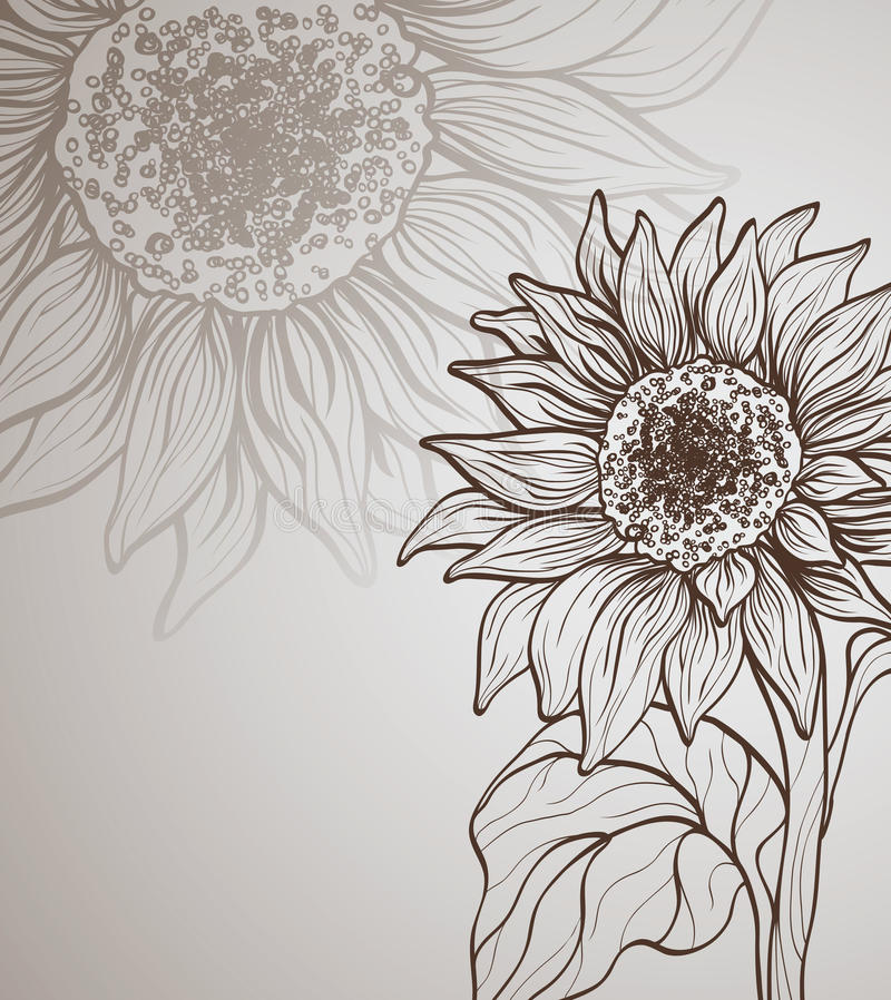 Background with sunflower vector illustration