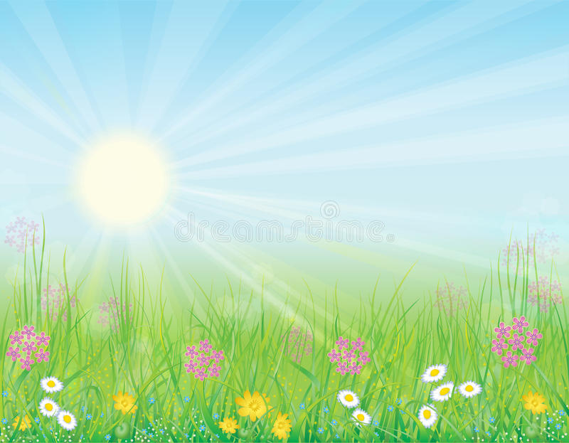 Download Background With Sunny Meadow Stock Photography - Image: 17802622