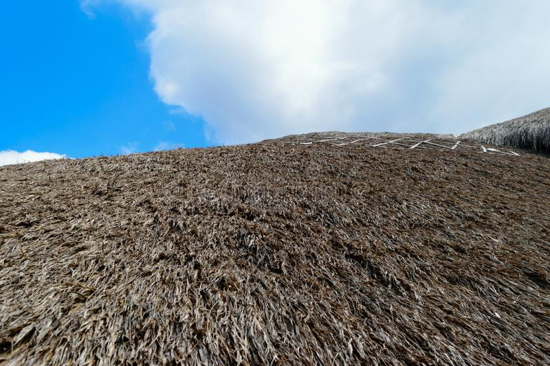 Background surface of straw roof in front of the blue sky and wh stock image