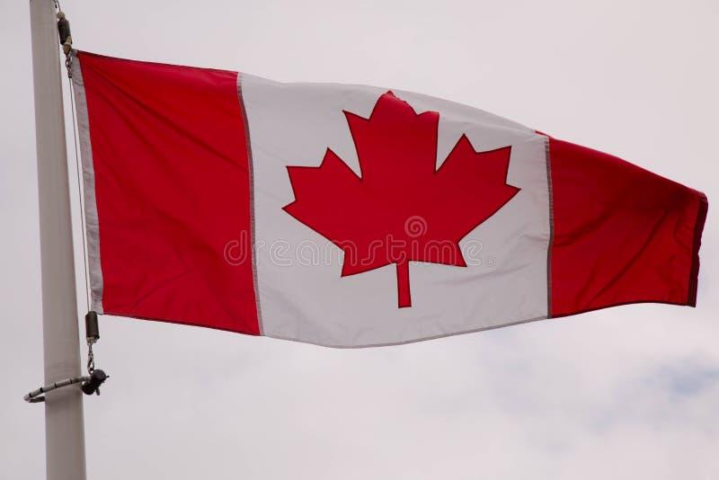 Background symbol Canada flag royalty free stock image