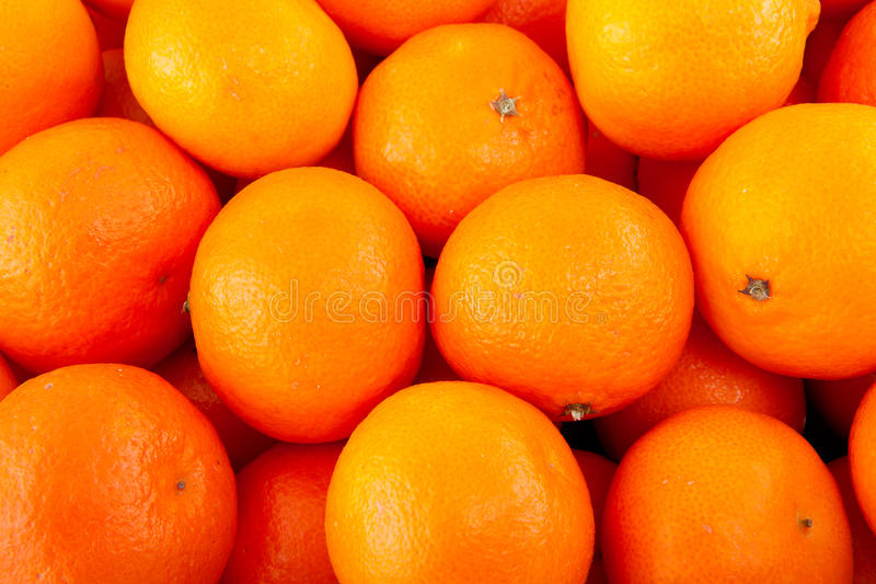 Background of tangerines stock image