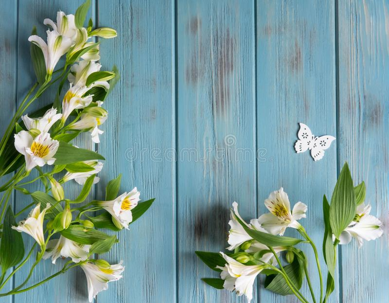 Background for text banner on a blue wooden background with white flowers and butterflies. Blank, frame for text. Greeting card design with flowers royalty free stock photography