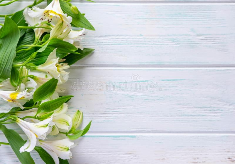 Background for text banner on a white wooden background with white flowers. Blank, frame for text. Greeting card design with. Flowers. alstroemeria on wooden stock image