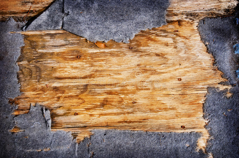 Rough Wood Background texture royalty free stock images