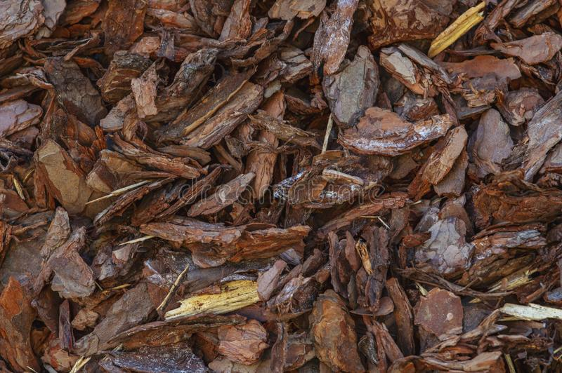 Background texture of bark or sliver with small pieces of natural wood royalty free stock image