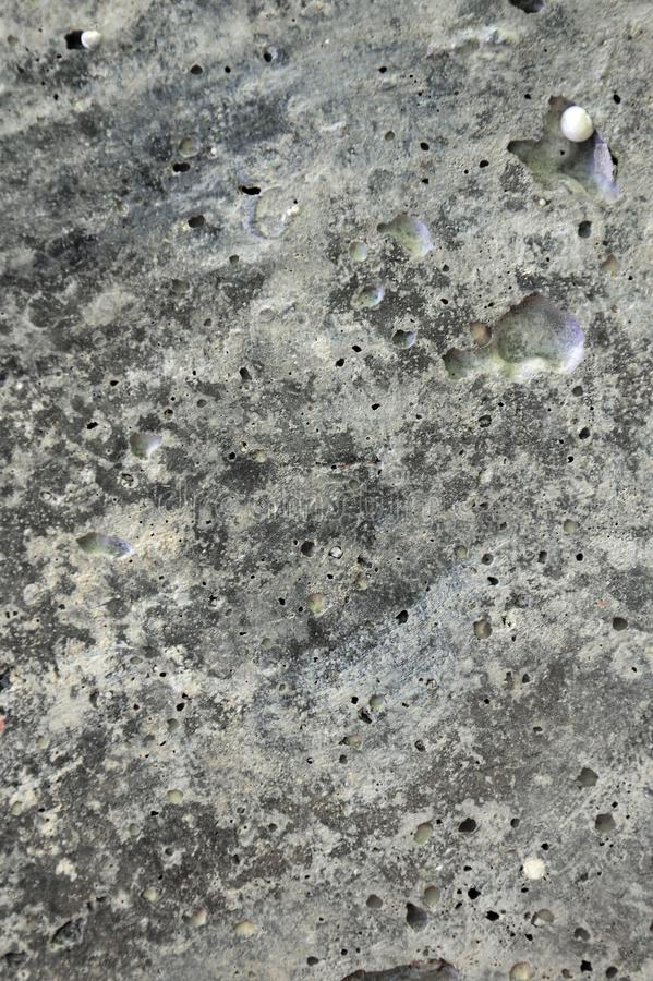 Background. Texture. Concrete. Universe. Space. Abstraction. Background. The texture of the concrete. The unknown mysterious space. Abstraction Of The Universe stock images