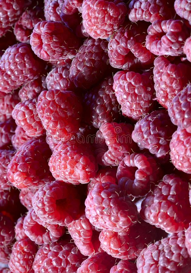 Background texture of fresh berries of red raspberries. stock images