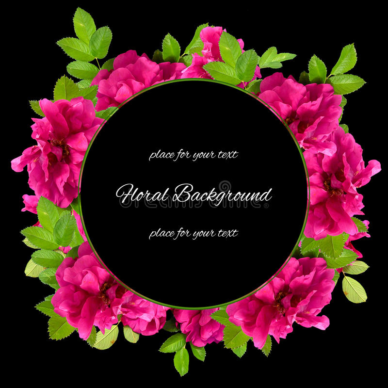 Background texture made of photo manipulation oil paint pink petals briar stock illustration