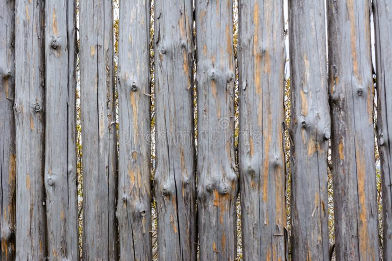 Background texture of old grey wooden fence from whole logs with  knots. Shabby fence royalty free stock photo