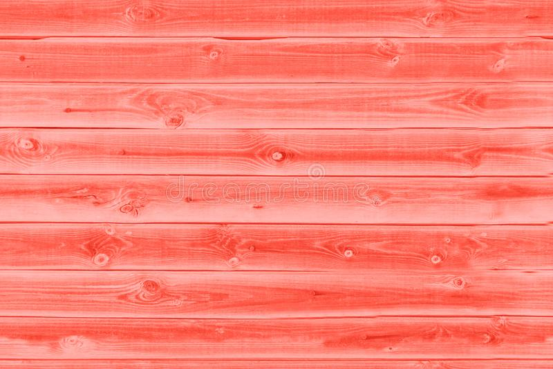 Background texture of old living coral red painted wooden lining boards wall. Living coral color background. Color of the year royalty free stock photography