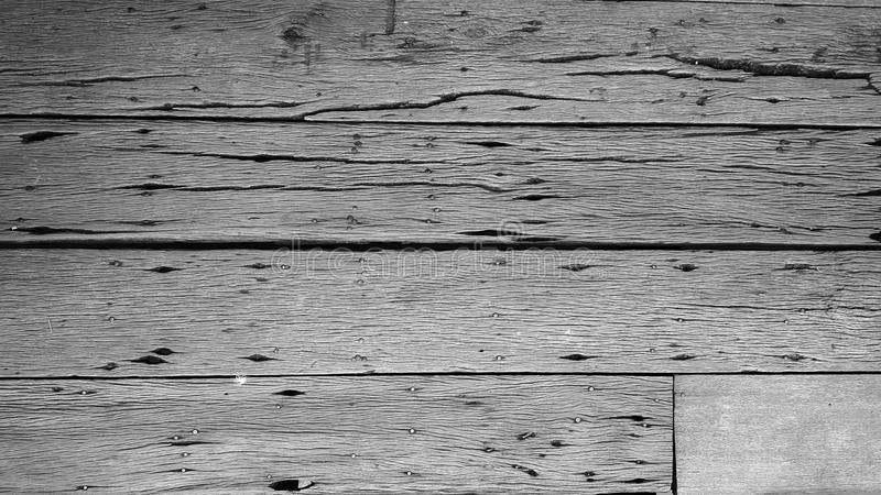 Background texture of old wood texture with nails. royalty free stock images